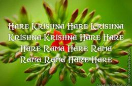 Hare Krishna Maha Mantra in French 030