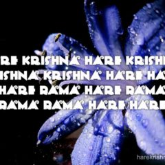 Hare Krishna Maha Mantra 190