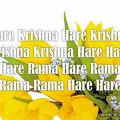 Hare Krishna Maha Mantra in Spanish 030