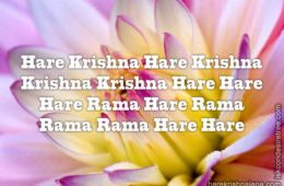 Hare Krishna Maha Mantra in Spanish 029