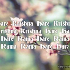 Hare Krishna Maha Mantra 251