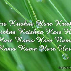 Hare Krishna Maha Mantra in Spanish 018