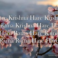 Hare Krishna Maha Mantra in Spanish 016