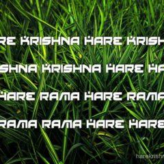 Hare Krishna Maha Mantra 294