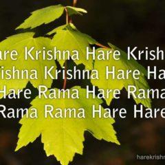 Hare Krishna Maha Mantra 296