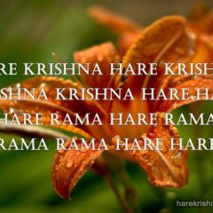 Hare Krishna Maha Mantra in Spanish 006