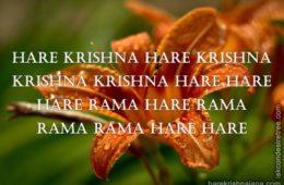 Hare Krishna Maha Mantra 321