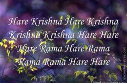 Hare Krishna Maha Mantra 333