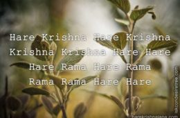 Hare Krishna Maha Mantra 334