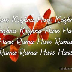 Hare Krishna Maha Mantra 335