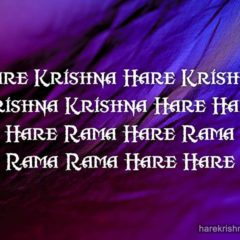 Hare Krishna Maha Mantra 337