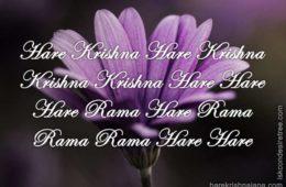 Hare Krishna Maha Mantra 339