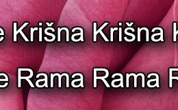 Hare Krishna Maha Mantra in Bosnian 005