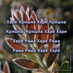 Hare Krishna Maha Mantra in Bulgarian 001