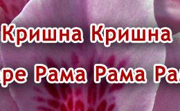 Hare Krishna Maha Mantra in Bulgarian 004