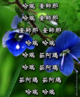 Hare Krishna Maha Mantra in Chinese 001