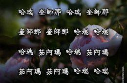 Hare Krishna Maha Mantra in Chinese 003