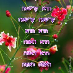 Hare Krishna Maha Mantra in Hebrew 003