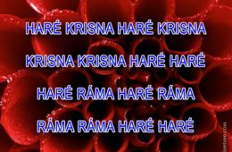 Hare Krishna Maha Mantra in Hungarian 001