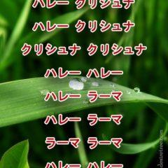 Hare Krishna Maha Mantra in Japanese 001