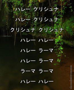 Hare Krishna Maha Mantra in Japanese 006