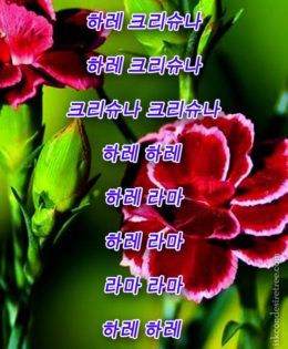 Hare Krishna Maha Mantra in Korean 001