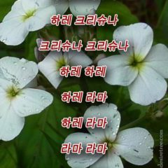 Hare Krishna Maha Mantra in Korean 002