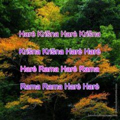 Hare Krishna Maha Mantra in Lithuanian 002