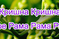 Hare Krishna Maha Mantra in Russian 002