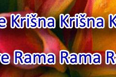Hare Krishna Maha Mantra in Slovenian 005