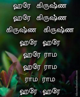 Hare Krishna Maha Mantra in Tamil 006