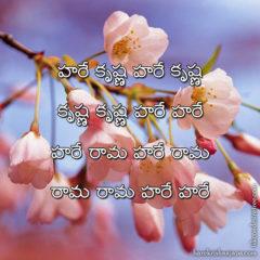 Hare Krishna Maha Mantra in Telugu 025