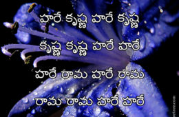 Hare Krishna Maha Mantra in Telugu 029
