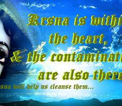 To understand Krishna, Chant Hare Krishna