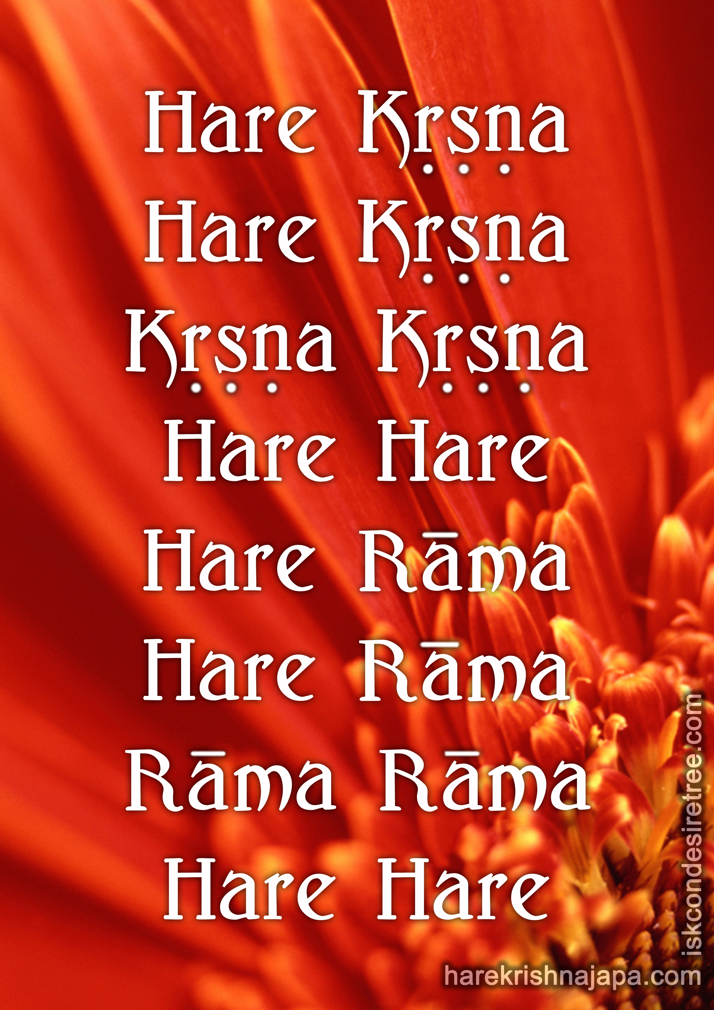 Hare Krishna Pictures Posters News And Videos On Your